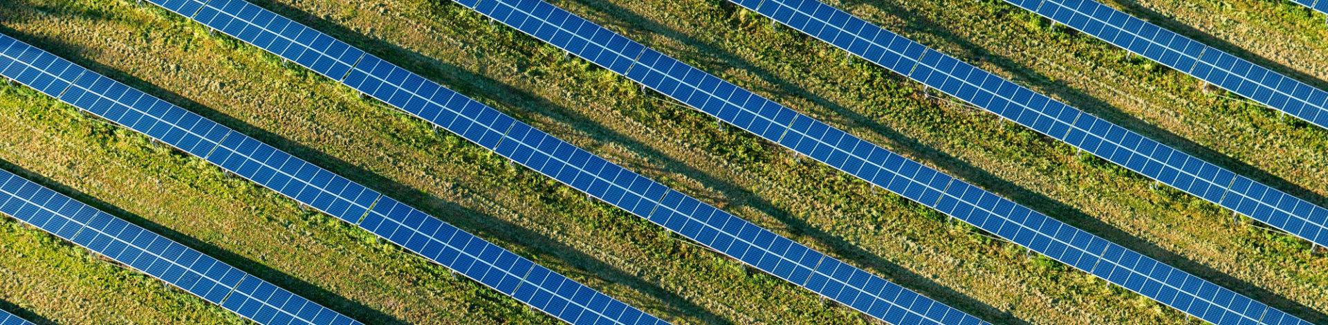 Sunvie, concepteur d'installations photovoltaïques